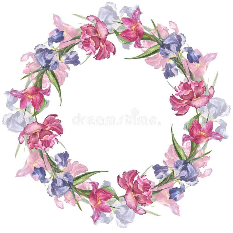Waterverf kleurrijk met de hand gemaakt rond kader met roze tulp en irisbloemen stock fotografie