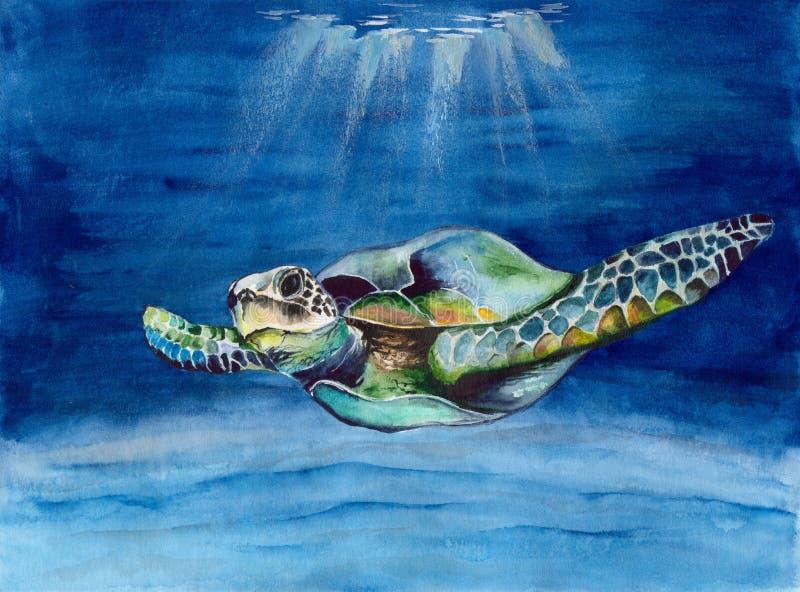 Waterverf kleurrijke zeeschildpad stock illustratie