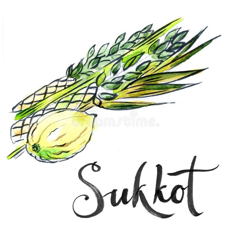 Waterverf lulav en etrog, Sukkot-installaties vector illustratie