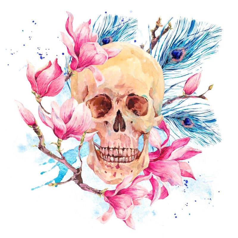 Waterverf menselijke schedel en roze bloemenmagnolia stock illustratie