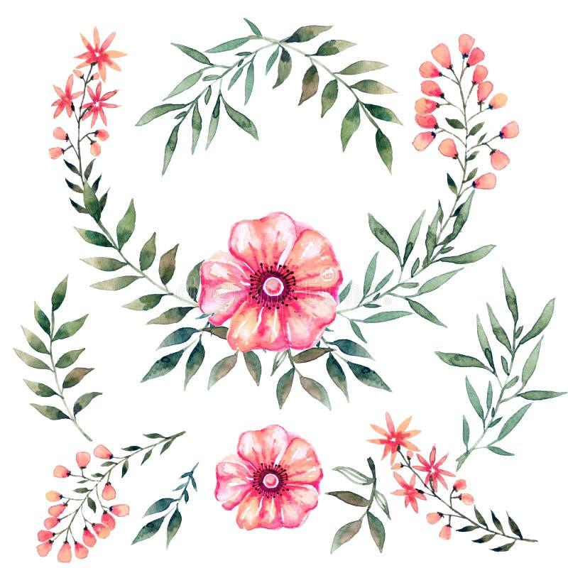 Waterverf met bloemen wordt geplaatst die royalty-vrije illustratie