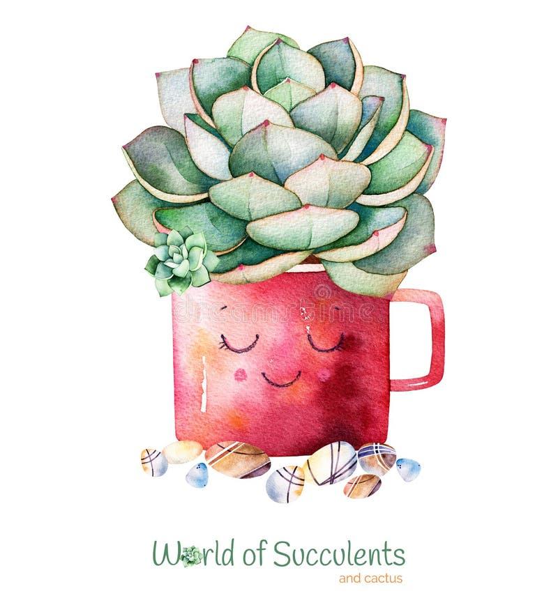 Waterverf met de hand geschilderde succulente installatie in pot en kiezelsteensteen vector illustratie