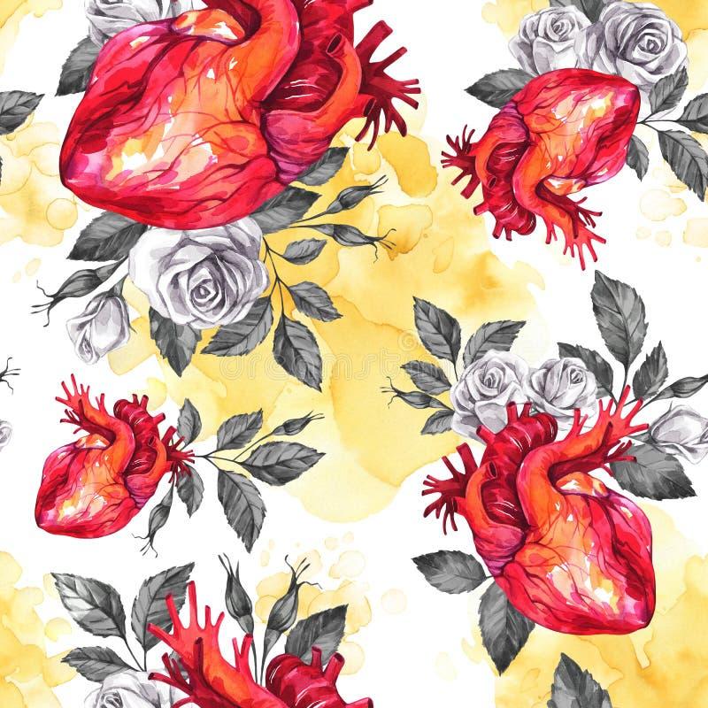 Waterverf naadloos patroon, anatomische harten met schetsen van rozen en bladeren in uitstekende middeleeuwse stijl Rood nam toe vector illustratie