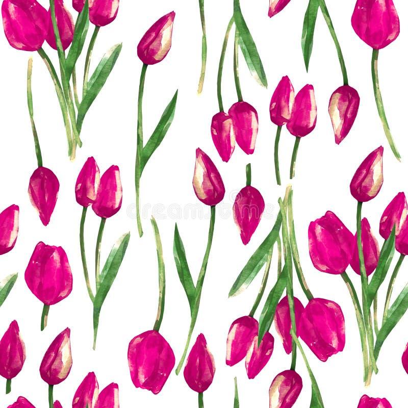 Waterverf naadloos patroon met geschilderde roze tulpen royalty-vrije illustratie