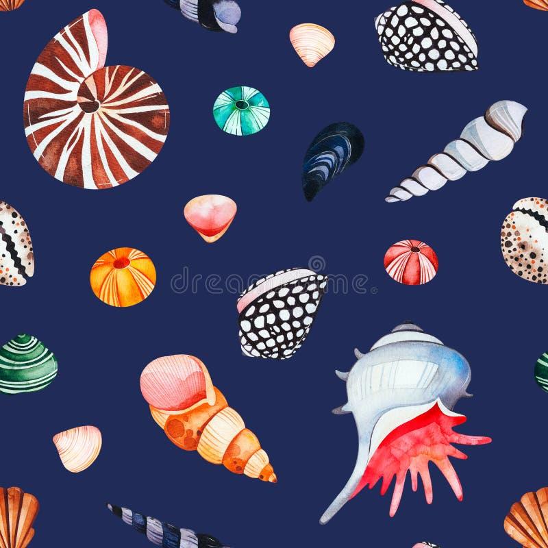 Waterverf naadloos patroon met multicolored zeeschelpen Donkere achtergrond royalty-vrije illustratie