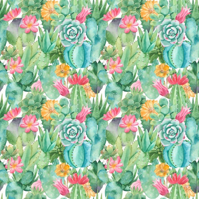 Waterverf naadloos patroon met samenstellingen van succulents, bloemen royalty-vrije illustratie
