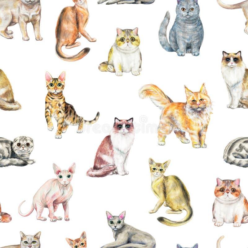 Waterverf naadloos patroon met tien verschillende rassen van katten royalty-vrije illustratie