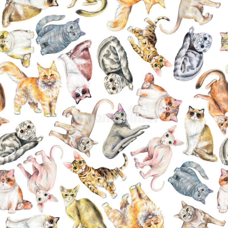 Waterverf naadloos patroon met tien verschillende rassen van katten vector illustratie