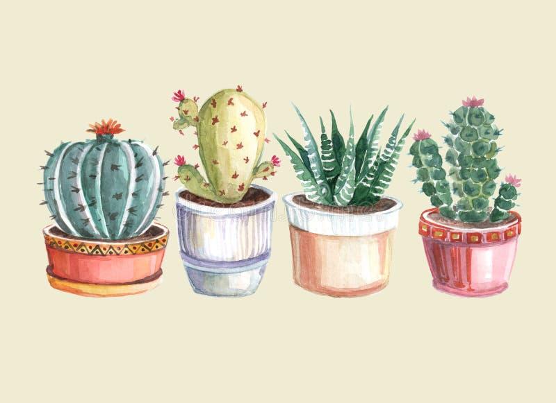 waterverf naadloos patroon van cactussen en succulents watercolor stock fotografie