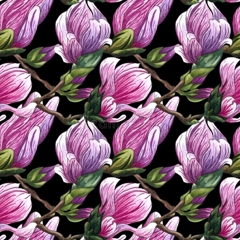 Waterverf naadloos patroon van roze Magnoliabloemen royalty-vrije illustratie