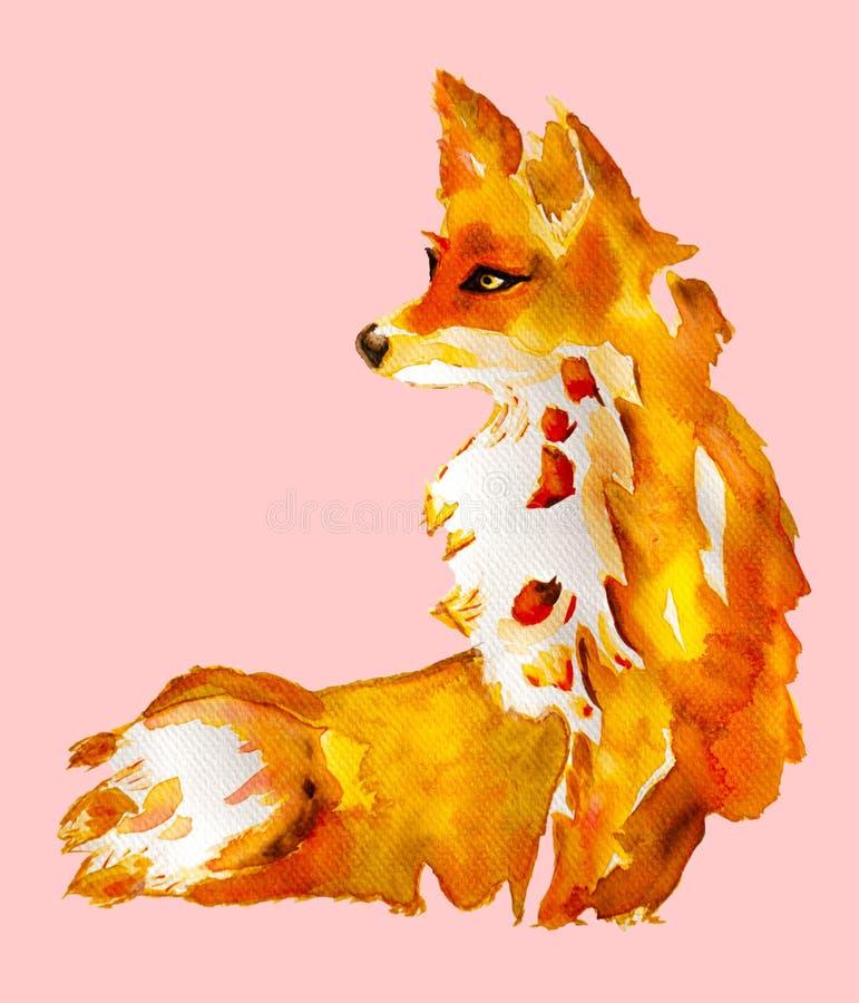 Waterverf schilderen van oranje jonge voszitting en kijken iets, met de hand getrokken en geïsoleerd op roze achtergrond, het wi stock foto