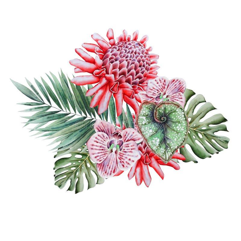 Waterverf tropisch boeket met bloemen Illustratie stock illustratie