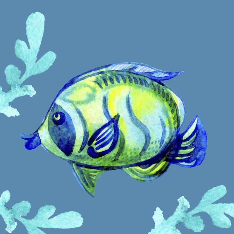 Waterverf tropische Overzeese Vissen van koraalriffen blauwe geelgroene kleuren en groene die waterplant op blauwe achtergrond wo vector illustratie