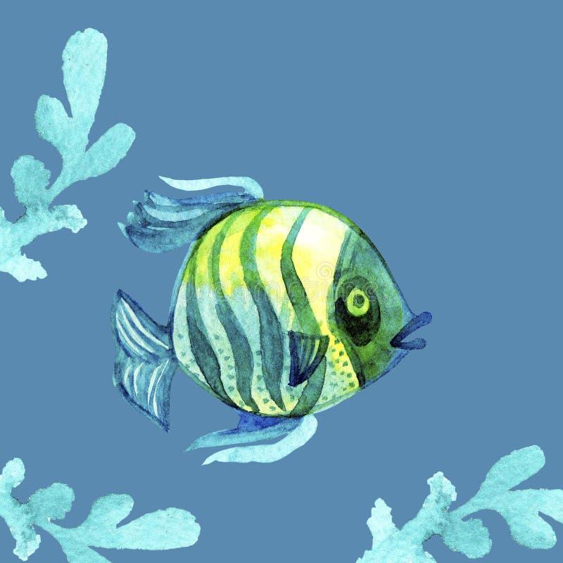 Waterverf tropische Overzeese Vissen van koraalriffen gestreepte blauwe geelgroene kleuren en groene die waterplant op blauwe ach vector illustratie