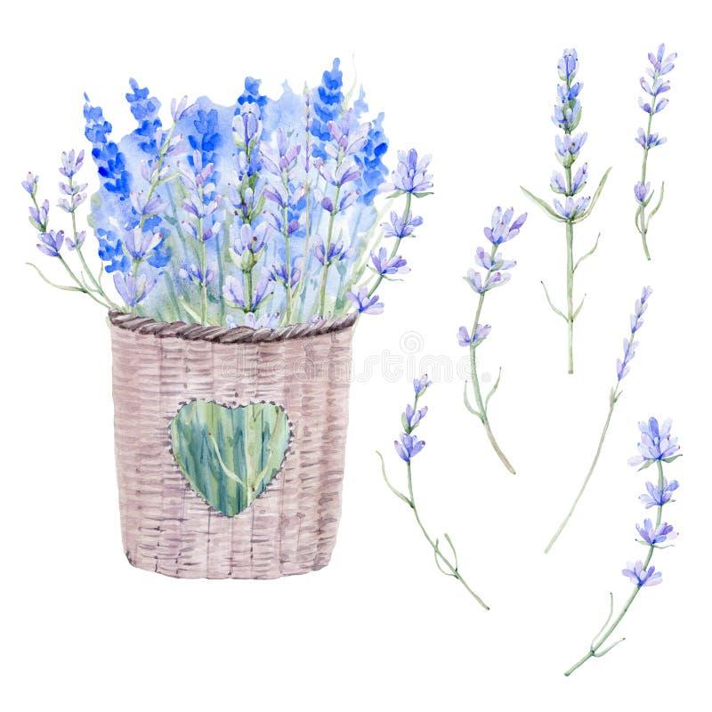 Waterverf uitstekende bloemenreeks stock illustratie