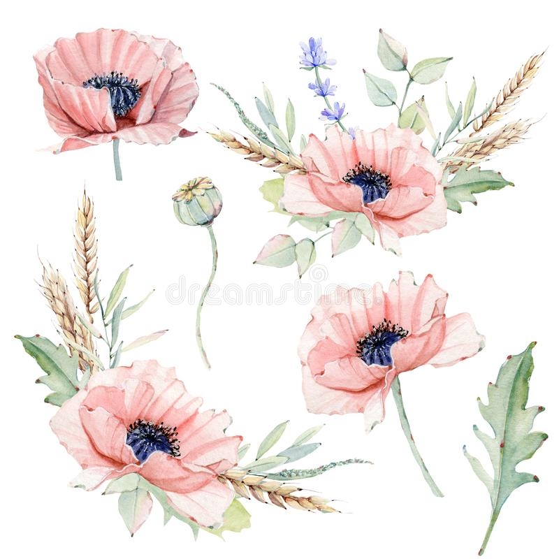 Waterverf uitstekende bloemenreeks royalty-vrije illustratie
