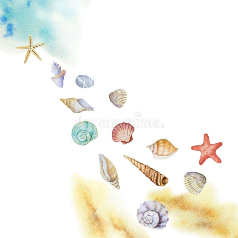Waterverf vectordie multicolored zeeschelpen en strand op een witte achtergrond worden geïsoleerd vector illustratie