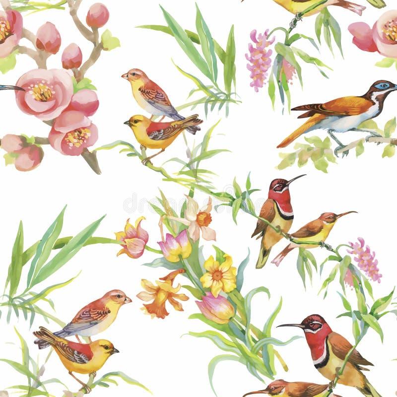 Waterverf Wilde exotische vogels op bloemen naadloos patroon op witte achtergrond