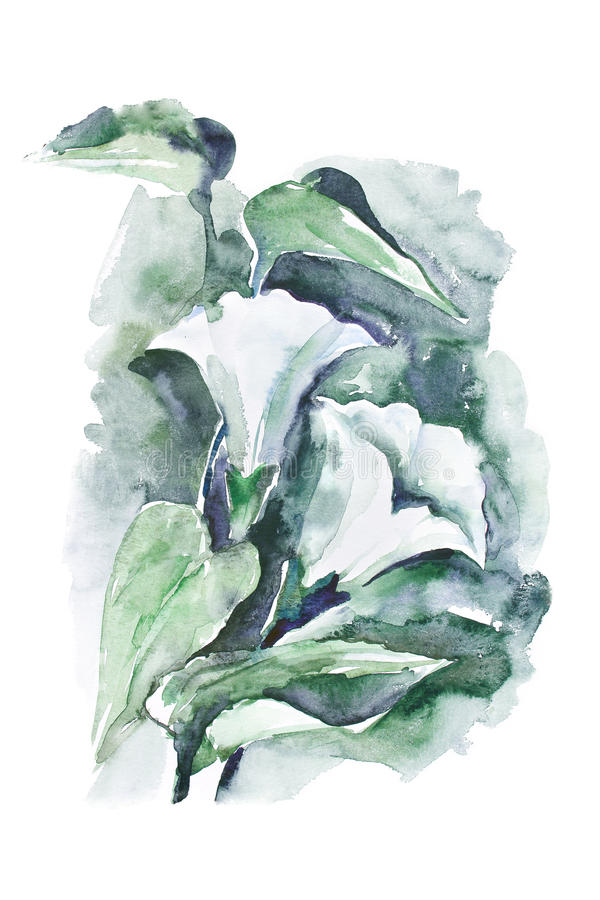 Waterverf - Winde royalty-vrije illustratie