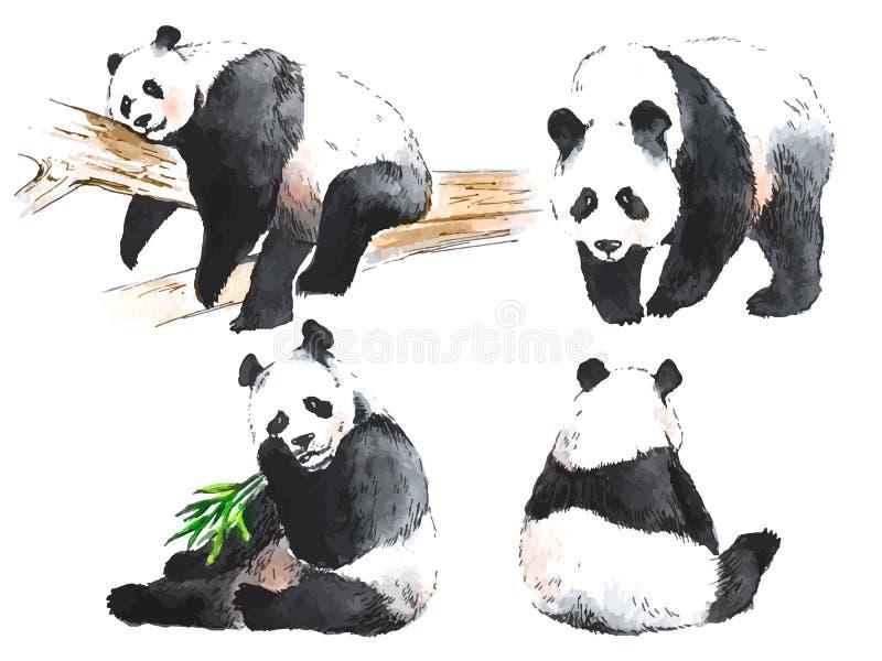 Waterverf zwart-witte vier panda's royalty-vrije illustratie
