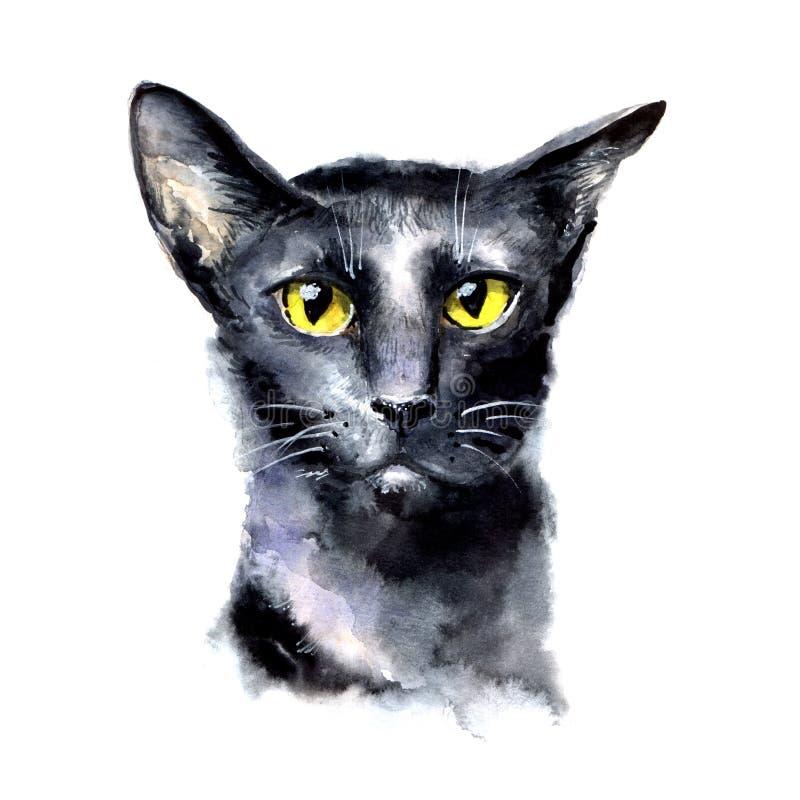 Waterverf zwarte kat met gele ogen stock illustratie