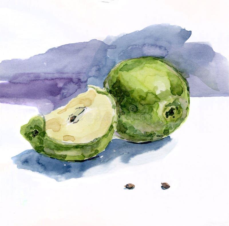 Waterverfappelen Een plak van Apple stock illustratie