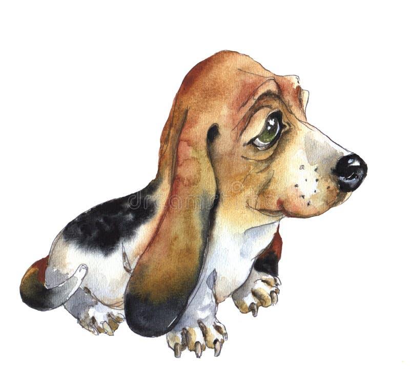Waterverfbasset hondenpapaver royalty-vrije illustratie