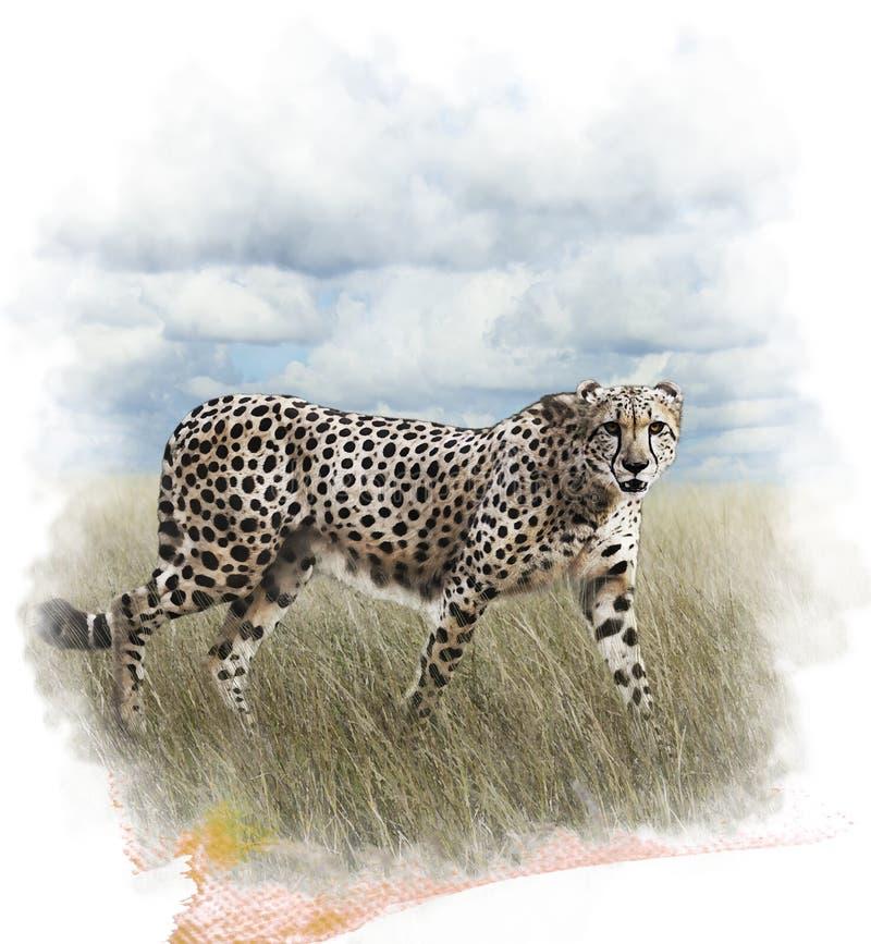Waterverfbeeld van Jachtluipaard vector illustratie