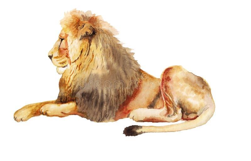 Waterverfbeeld van Leeuw vector illustratie