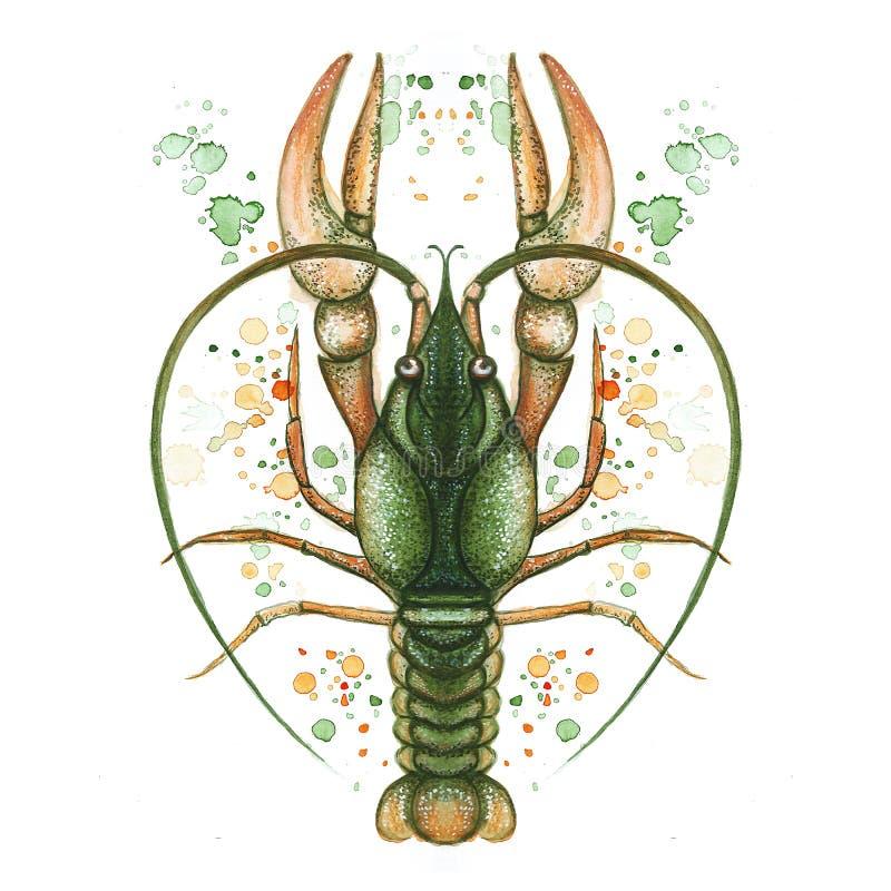 Waterverfbeeld van schaaldier, kanker, zeekreeft, dierenriemteken, rivierkanker, gedetailleerde illustratie, macro, groene nevel, stock illustratie