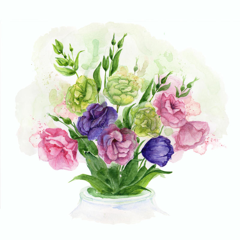 Waterverfboeket met de gevoelige bloemen van de lenteeustoma royalty-vrije illustratie