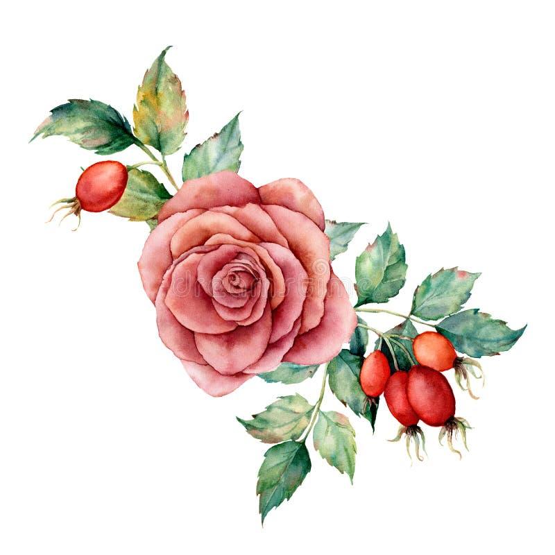 Waterverfboeket met roos en dogrose De hand schilderde bloemenillustratie met roze bloem, bessen, bladeren en vector illustratie