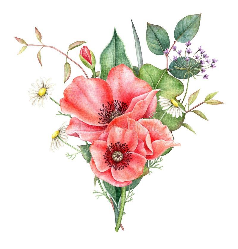 Waterverfboeket van rood die papaver, kamille en groen op witte achtergrond wordt geïsoleerd Hand geschilderde illustratie royalty-vrije illustratie