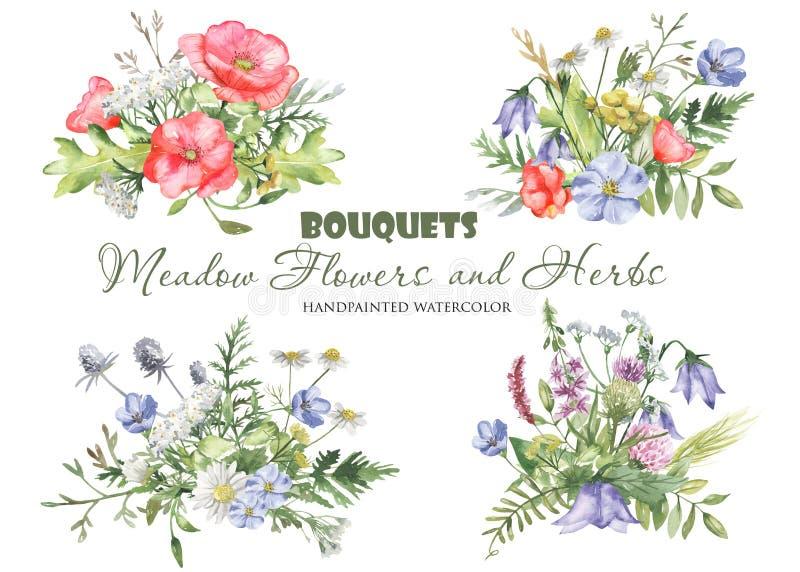 Waterverfboeketten met wildflowers, kruiden, installaties, weidebloemen stock illustratie