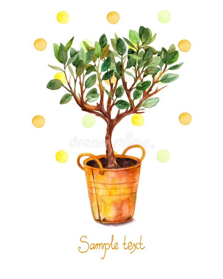 Waterverfboom in pot met waterverfplonsen Vector illustratie De de lentetijd… nam bladeren, natuurlijke achtergrond toe vector illustratie