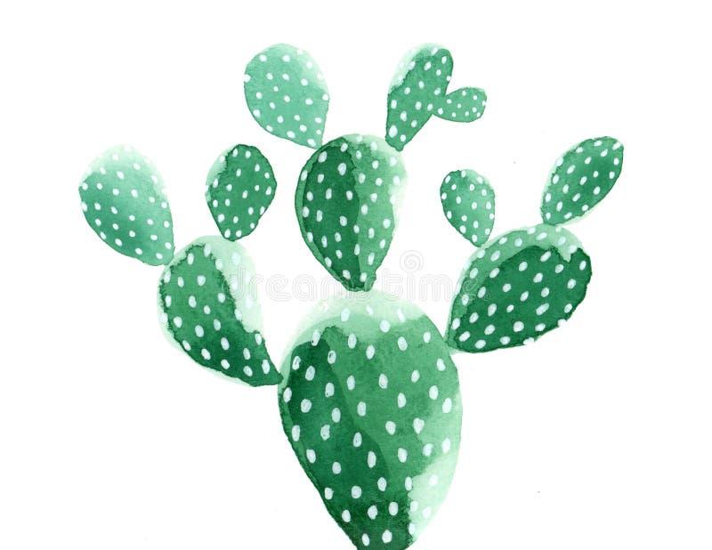 Waterverfcactus het schilderen De Cactus ` van het vijgencactus` Stootkussen royalty-vrije illustratie