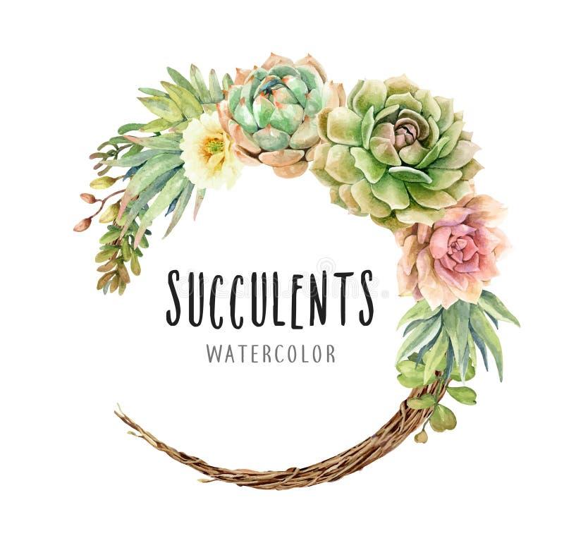 Waterverfcactussen en Succulents op wijnstokkroon vector illustratie