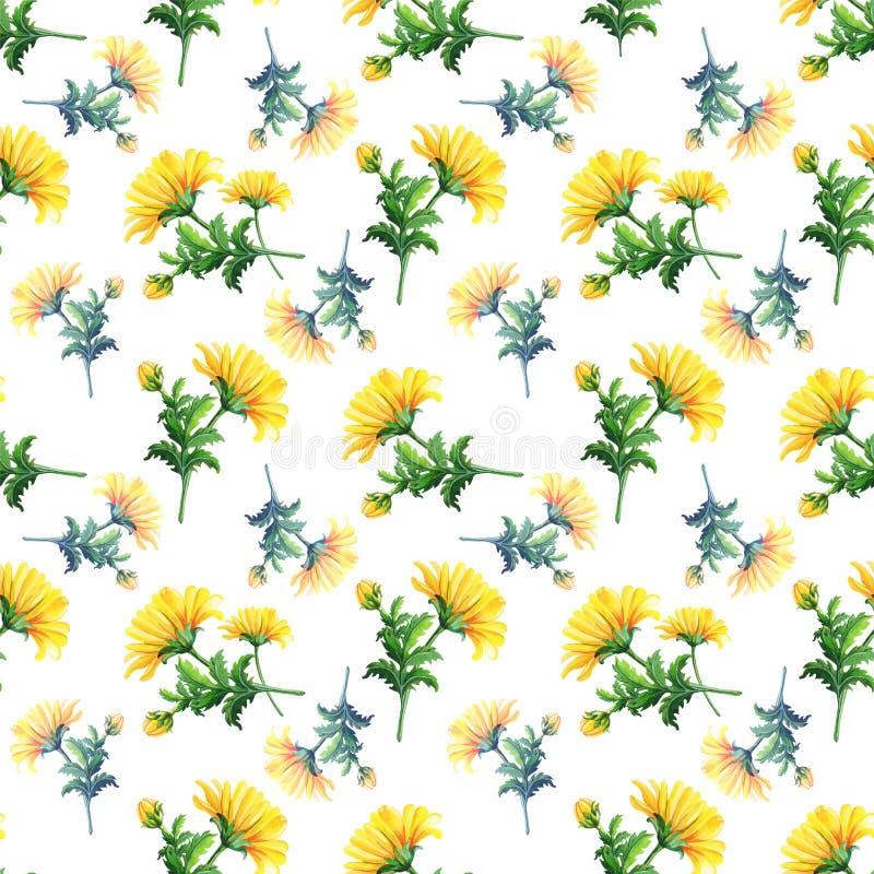 Waterverfchrysanten op een witte achtergrond Abstract naadloos patroon van gele bloemen vector illustratie