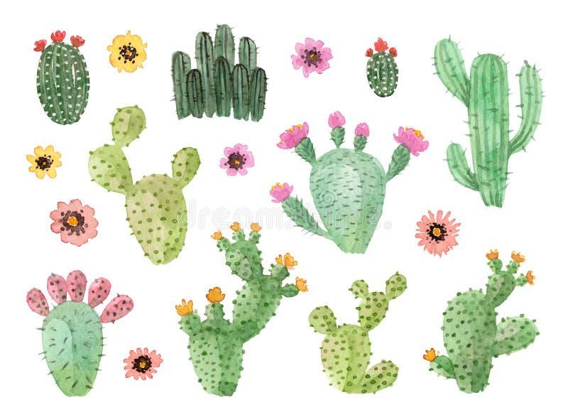 Waterverfhand geschilderde cactussen met bloemen stock afbeelding