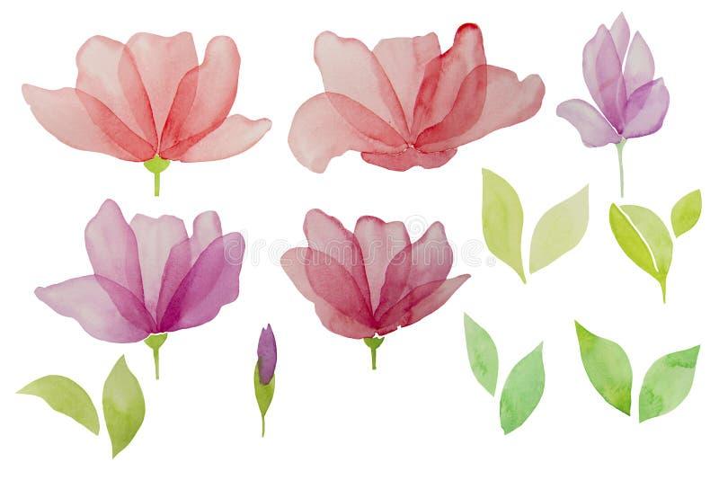 Waterverfhand getrokken bloemen die op een witte achtergrond worden geïsoleerd Het element van het ontwerp royalty-vrije illustratie