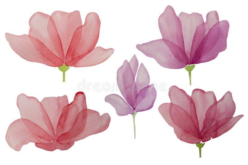 Waterverfhand getrokken bloemen die op een witte achtergrond worden ge?soleerd Het element van het ontwerp stock illustratie