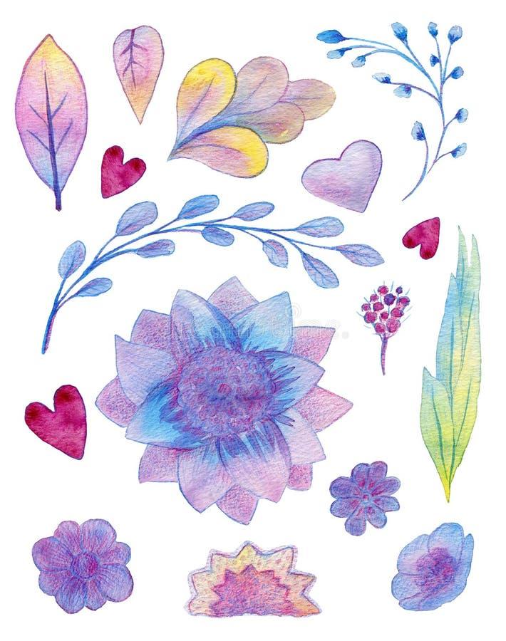 Waterverfhand getrokken gekleurde reeks met regenboog bloemenelementen royalty-vrije illustratie