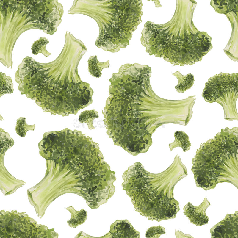 Waterverfhand getrokken naadloos patroon met broccoli vector illustratie