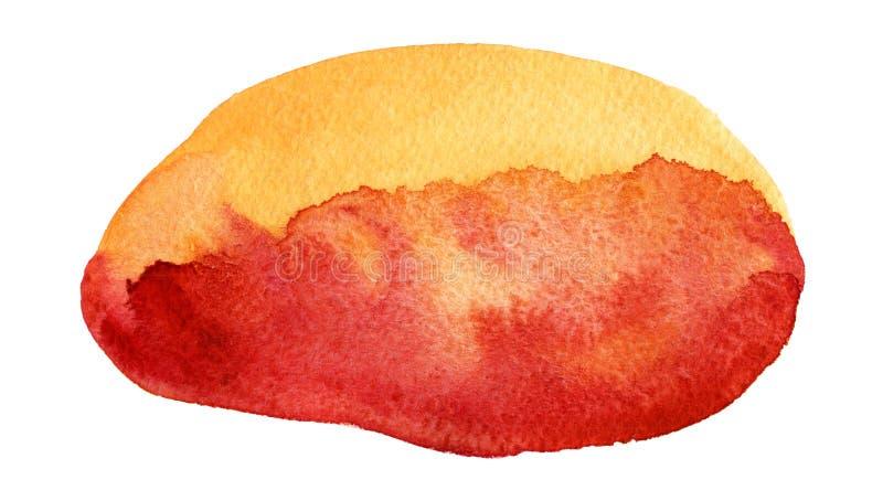 Waterverfhand getrokken rode, gele en oranje ovale vlek De illustratie van de rooster royalty-vrije illustratie