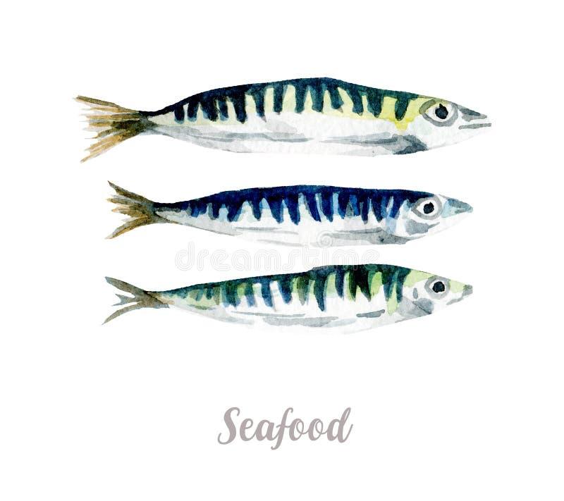 Waterverfhand getrokken vissen verse zeevruchtenillustratie op witte achtergrond stock illustratie