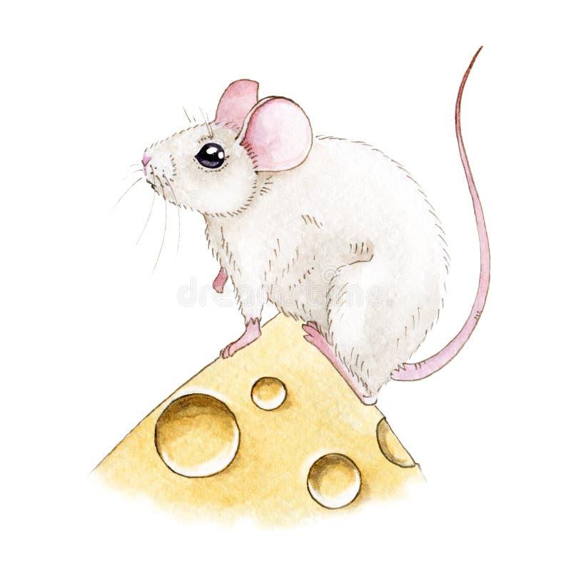 Waterverfillusration van een leuke kleine witte muis op een stuk van kaas Kleine muiskleurige die illustratie op witte achtergron stock illustratie