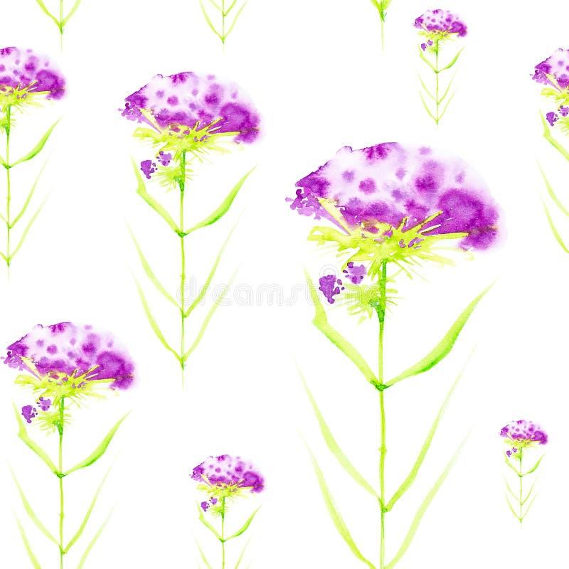 Waterverfillustratie met mooie abstracte purpere bloemen Ge?soleerdj op witte achtergrond Naadloos patroon vector illustratie