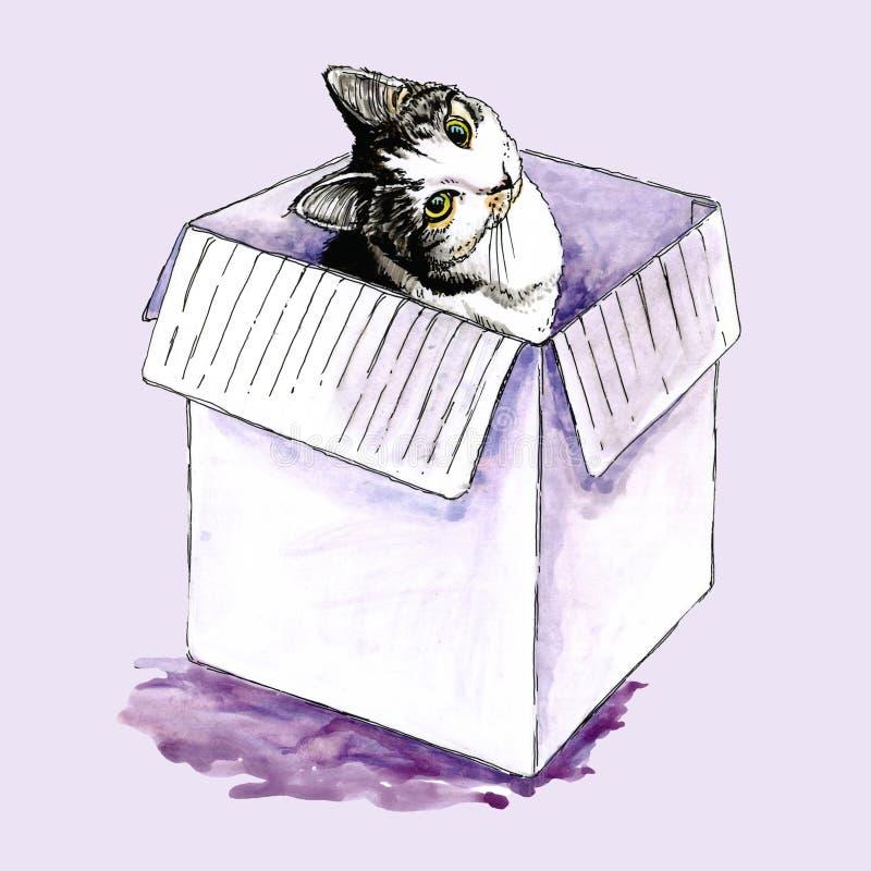 Waterverfillustratie van een kat in een doos royalty-vrije illustratie
