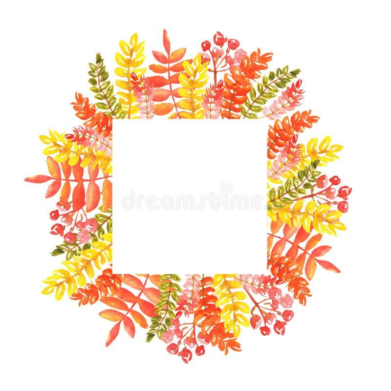 Waterverfillustratie van een vierkant kader van de herfstbladeren en twijgen van lijsterbes van rode oranje schaduwen stock afbeelding