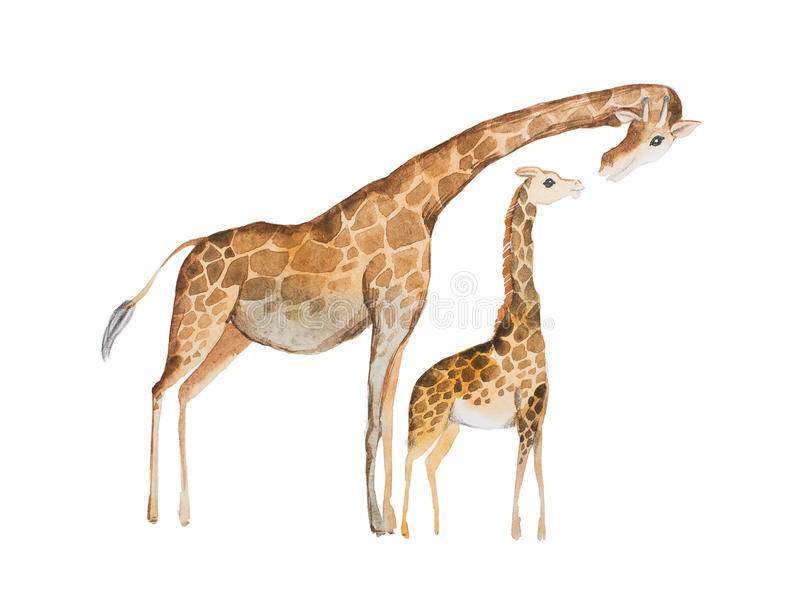 Waterverfillustratie van girafmoeder en baby vector illustratie